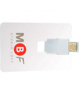 1 GB Universal Source™ Flip Card USB 2.0 Flash Drive