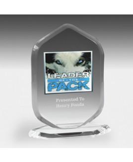 """Ocean Series Billboard Award - Laser Engraved (5""""x6 3/4"""")"""