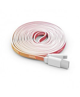 10 Foot Branded Cable