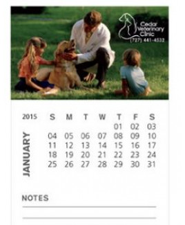 BIC® 30 Mil Business Card Magnet w/ 12 Sheet Calendar and Note Lines