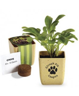 Flower Pot Set w/Chive Seeds