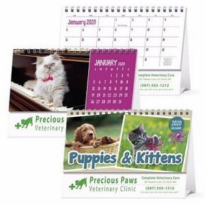 Triumph® Puppies & Kittens 2019 Desk Calendar