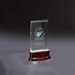 Statute Medium Award