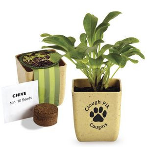 Flower Pot Set with Chive Seeds